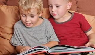 3 Лучшие книги о близнецах и двойниках