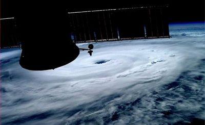 Братья по ураганам - «наука»