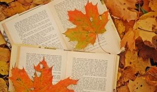 Книга с интригой: новинки октября