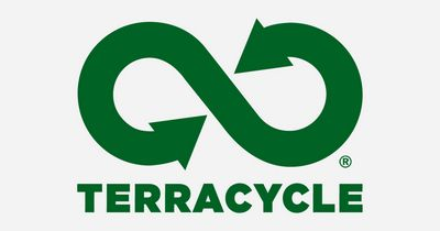 Компания terracycle решила проблему с переработкой окурков