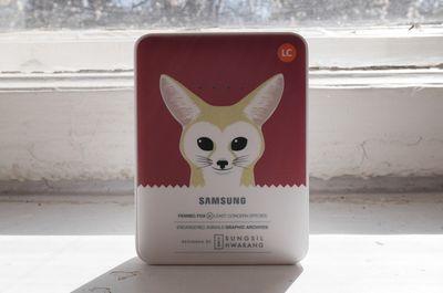 Краткий обзор внешнего аккумулятора samsung external battery pack animal edition