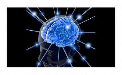 Мозг никогда не ленится - «наука»