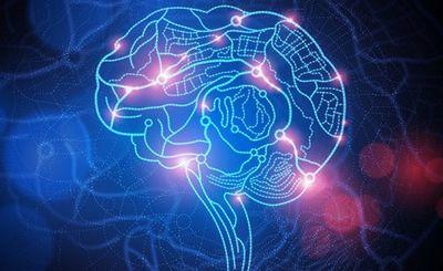 Наши представления о человеческом разуме неверны - «наука»