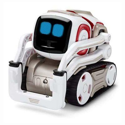 Обучающий детский робот (16 фото + видео)