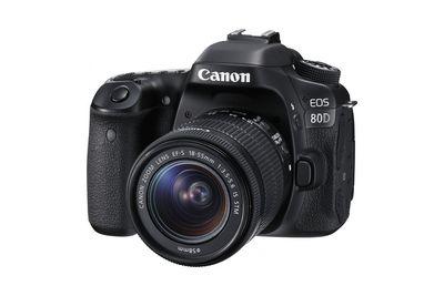 Pentax k-x: фотокамера с возможностью записи hd-видео (14 фото)