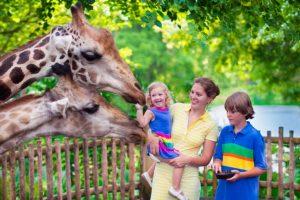 Поход в зоопарк - полезные советы для родителей