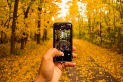 Самые интересные смартфоны сентября