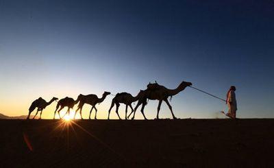 Северная африка и ближний восток могут стать необитаемыми - «наука»
