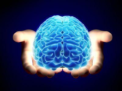 Симбиоз ии с мозгом человека — новый проект элона маска