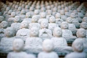Smm в стиле дзен. cтань гуру продвижения в социальных сетях и новых медиа