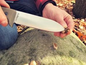 Советы по выбору ножа