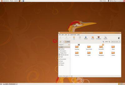Ubuntu 10.04 lts: обзор и тест lucid lynx