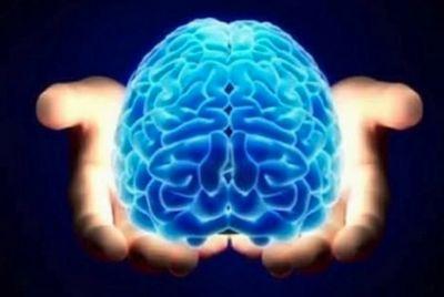 Ученые нашли в мозге человека центр чувства собственного превосходства