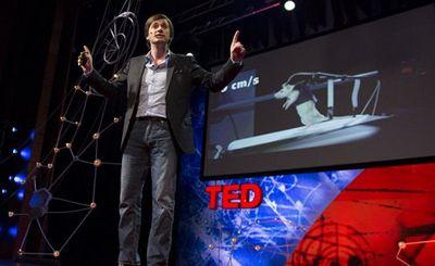 Вживленный в спинной мозг беспроводной имплант поставил на ноги обезьяну - «наука»